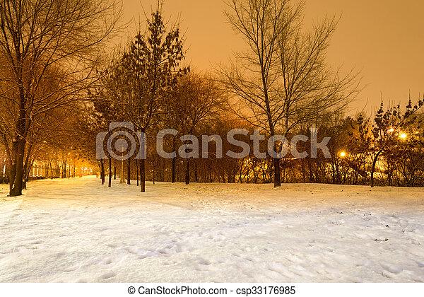 風景, 冬ツリー - csp33176985