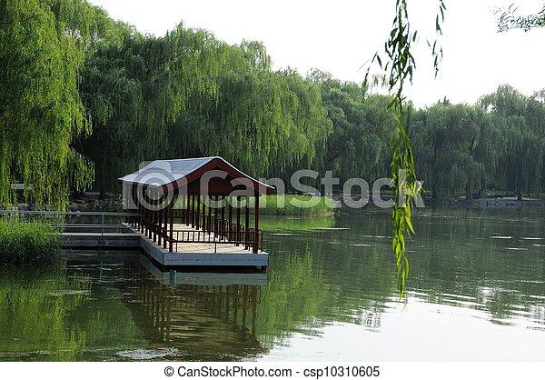 图画, 北京, 风景, 宫殿, 夏天