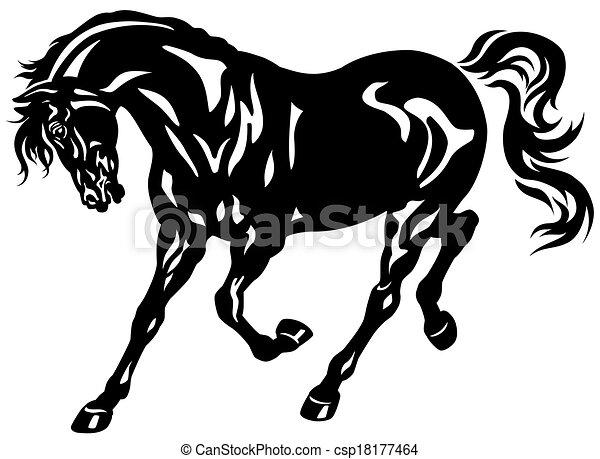 馬, 黒 - csp18177464