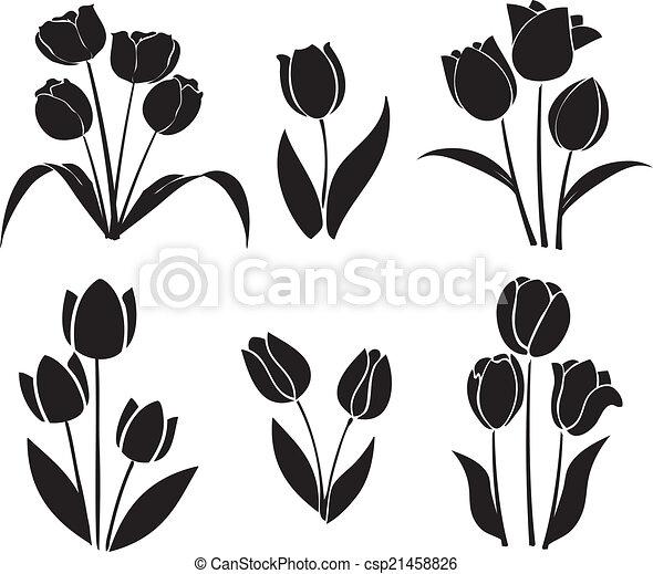 鬱金香, 黑色半面畫像, 矢量 - csp21458826