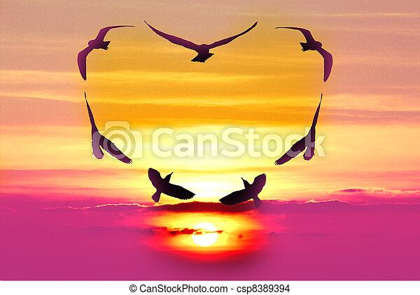 鳥, 情人節 - csp8389394