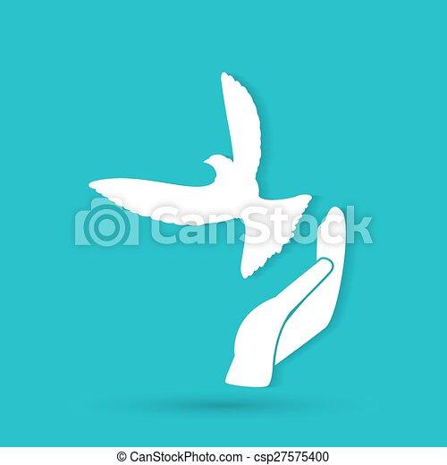 鳩, イラスト, 手 - csp27575400