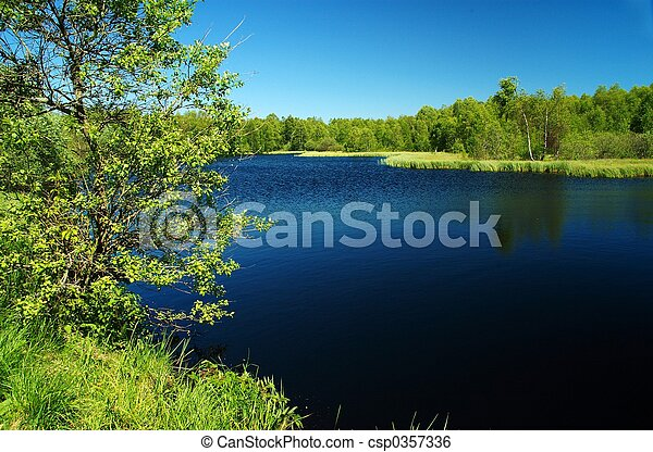 黑暗, 荒野, 湖, th - csp0357336