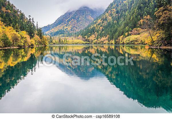 가을, 호수, 다채로운 - csp16589108