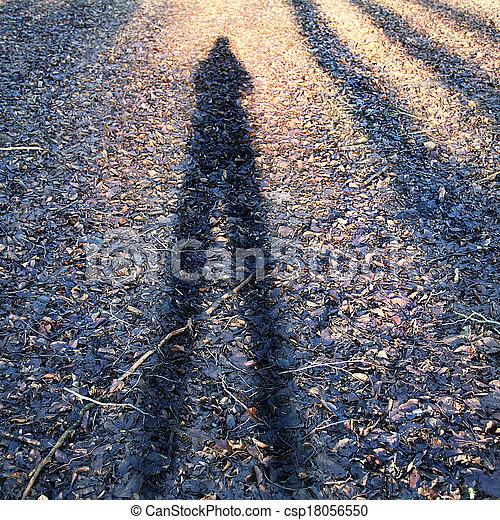 개념의, 사진, shadow., 남자의 것 - csp18056550