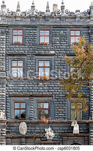 건물, 창, 정면 - csp6031805
