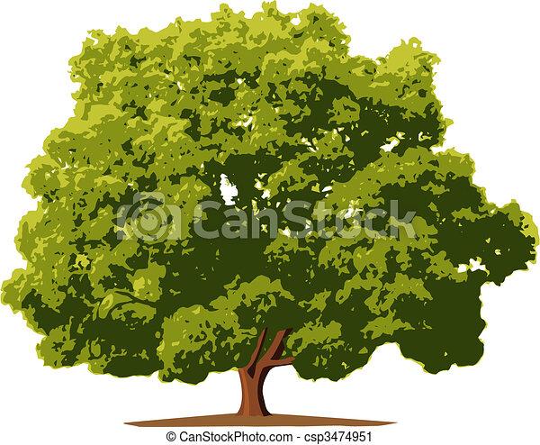나무 - csp3474951