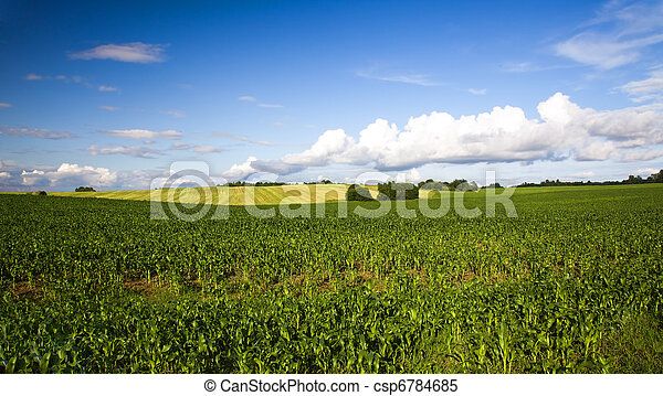 농업 - csp6784685