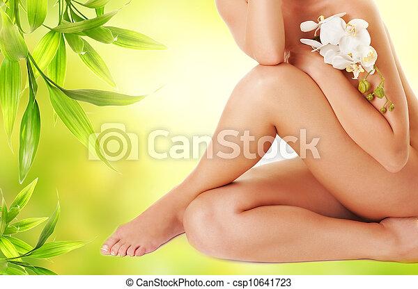 백색, 다리, 여성, 난초 - csp10641723