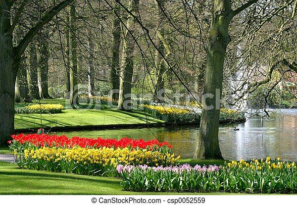 봄, 공원, 시간 - csp0052559