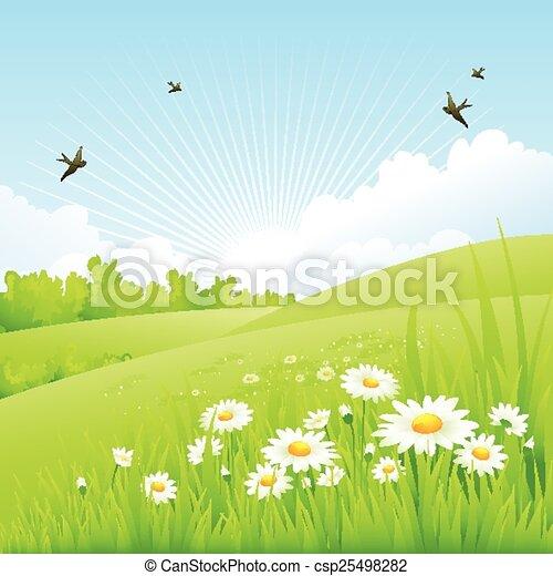 봄, 놀랄 만한, scenery., 날씬한 - csp25498282