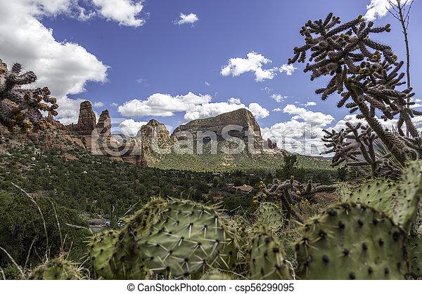 사막 장소 - csp56299095