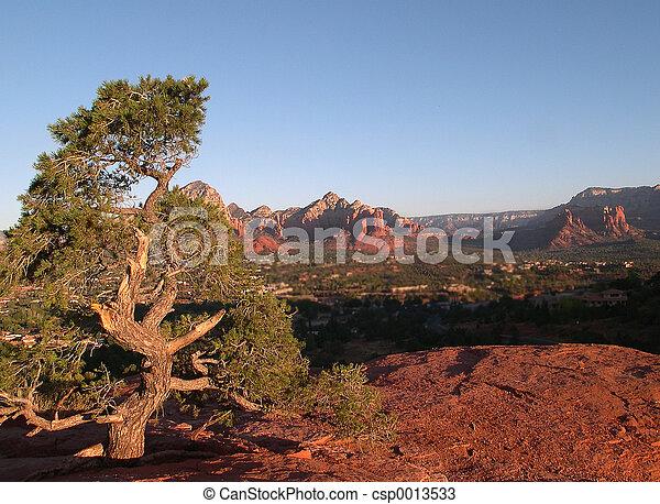 사막, sedona, 장면 - csp0013533