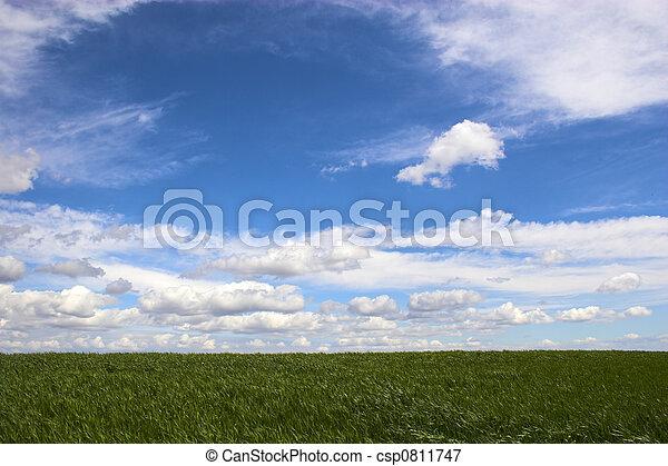 시골 - csp0811747