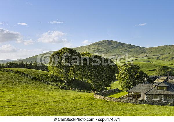 시골, 집, 영어 - csp6474571