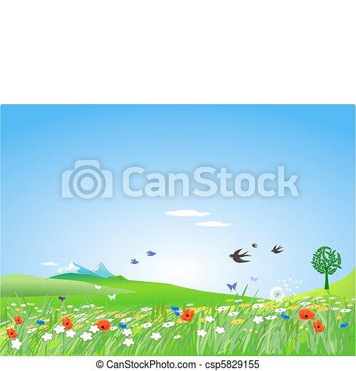 시골, springlike - csp5829155