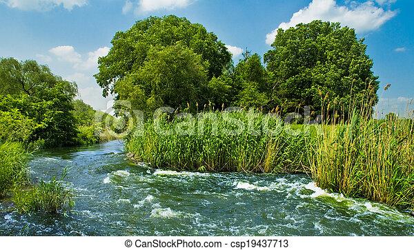 아름다운, 시골, 장면 - csp19437713
