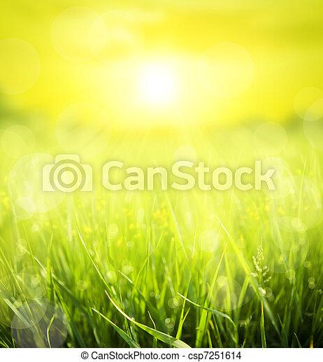 여름, 떼어내다, 배경 - csp7251614