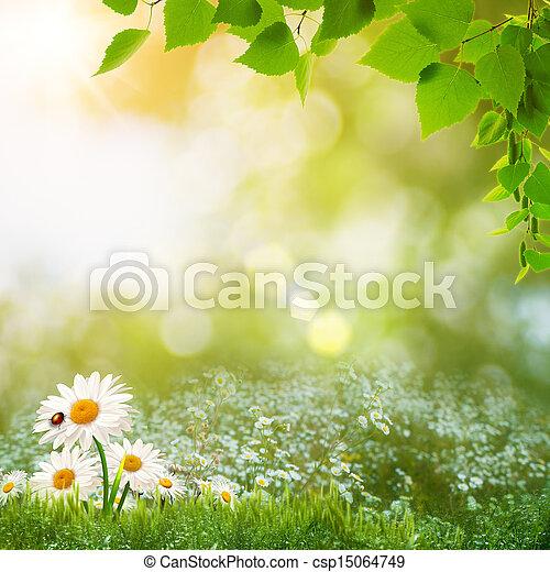 여름, 목초지, 자연의 아름다움, 떼어내다, 일, 조경술을 써서 녹화하다 - csp15064749