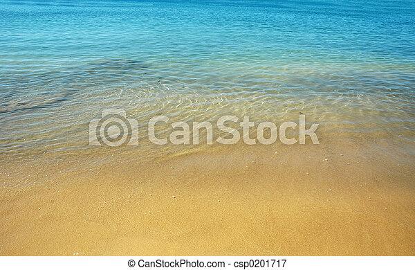 여름, 바닷가 - csp0201717