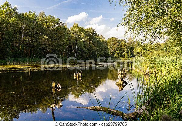 여름, 호수 - csp23799765
