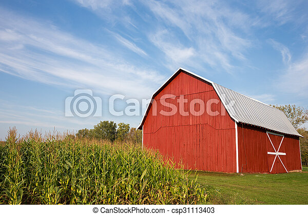 옥수수, 극적인 하늘, 빨강 축사 - csp31113403