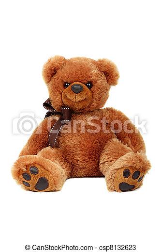 장난감, 발사, 고립된, 곰, 배경., 스튜디오, 백색 - csp8132623