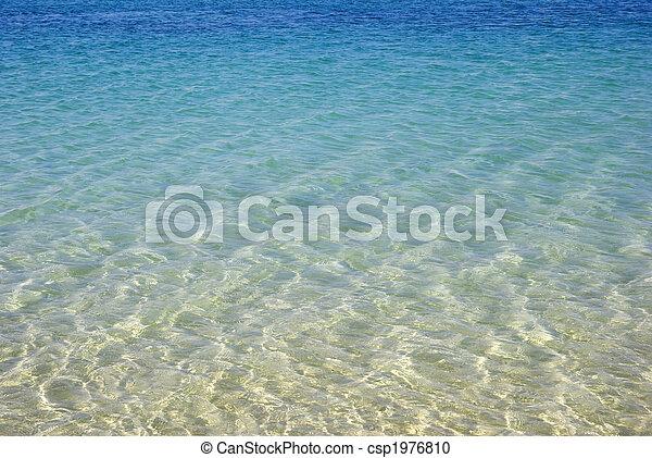 청록색의, seascape., wallpaper., 아름다움, 자연 - csp1976810