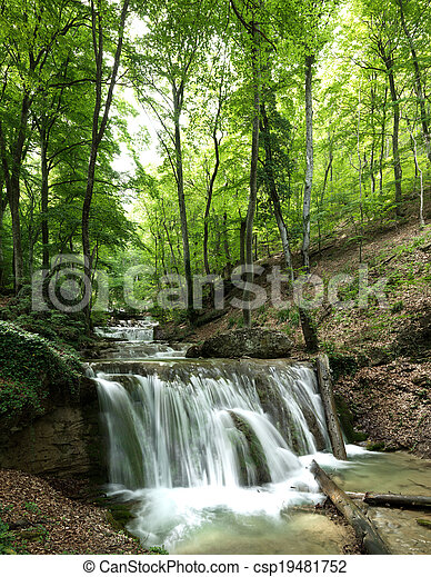 폭포, 숲 - csp19481752