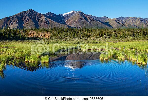 호수, 알래스카 - csp12558606