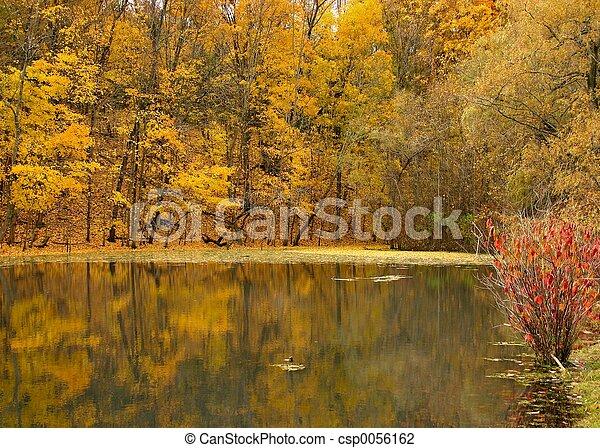 황금, 호수 - csp0056162