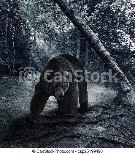 회색곰 - csp25199490