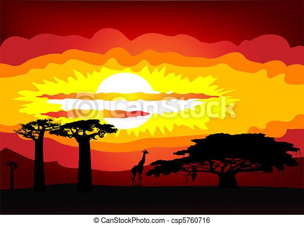 -, ベクトル, 日没, アフリカ - csp5760716
