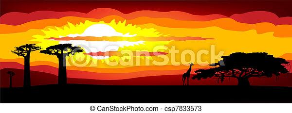 -, ベクトル, 日没, アフリカ - csp7833573