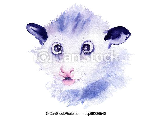 Aquarela Possum Animal Pequeno Desenho Esboco Possum