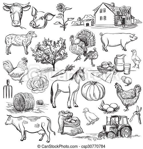 Colección de granjas, juego de manos dibujados - csp30770784