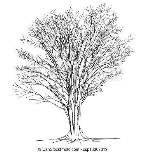 Feuilles arbre main grand sans nu dessin - Dessin arbre nu ...