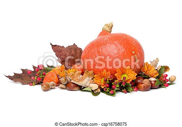 Autumn - Stillleben mit Hokkaido Kürbis - isoliert auf weiß - csp16758075