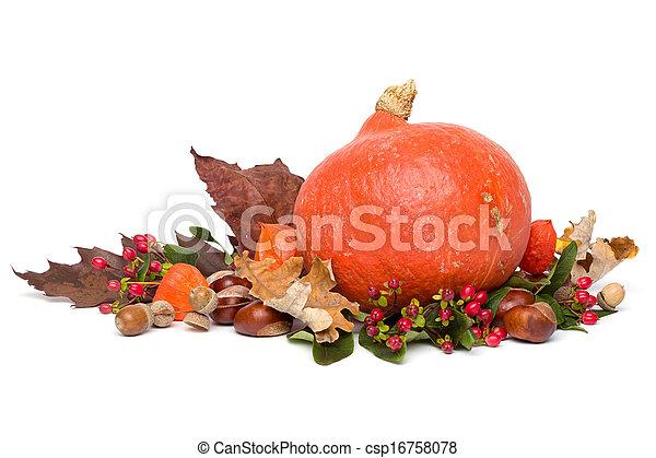 Autumn - Stillleben mit Hokkaido Kürbis - isoliert auf weiß - csp16758078