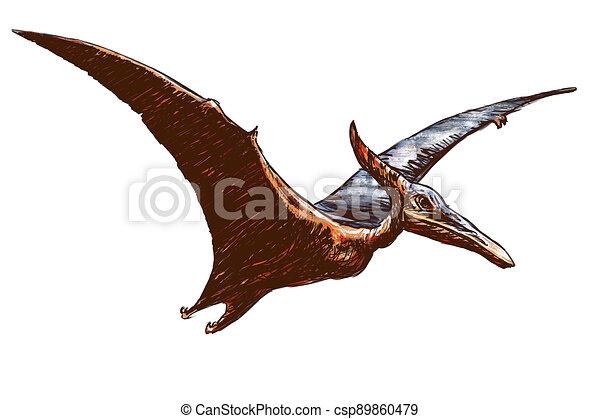 -, neposkvrněný, pterodactylus, grafické pozadí color, ilustrace - csp89860479