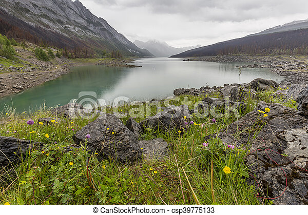 -, parco nazionale, lago, diaspro, medicina - csp39775133