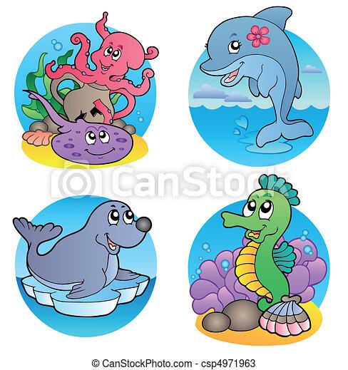 1, acqua, pesci, vario, animali - csp4971963