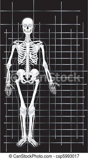 1, geschaeftswelt, skelett, karte - csp5993017