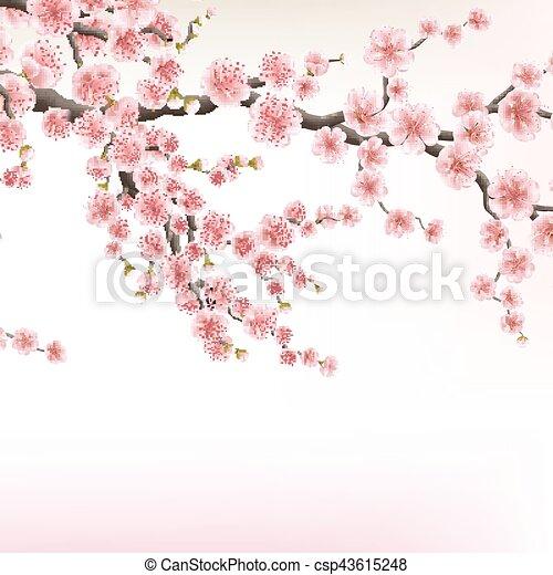 Fleurs De Cerisier Japonais Dessin Gamboahinestrosa