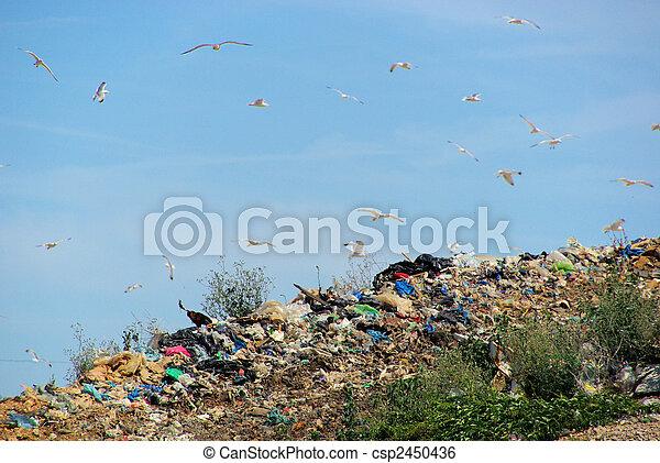 10, décharge ordures - csp2450436