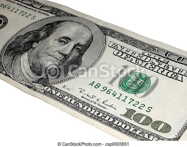 100 dollars - csp0003651