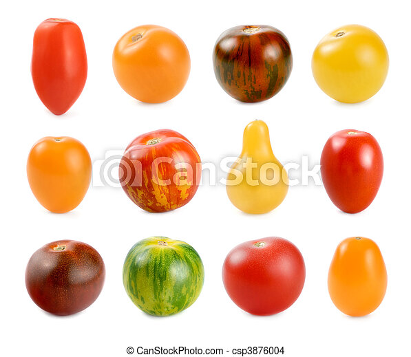 12 different sorts of tomatoes over white - csp3876004