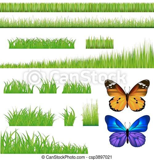 2 Butterflies And Green Grass Set - csp3897021