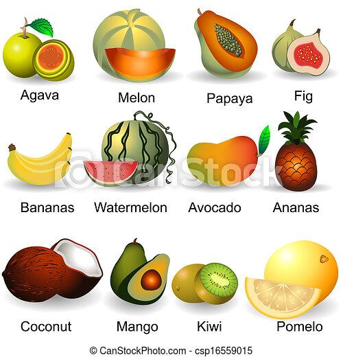 Colección de frutas 2 - csp16559015