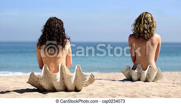 2 girls in seashells - csp0234073